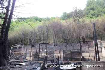Gartenlaube in Hohenöllen abgebrannt: Feuerwehr verhindert Ausbreitung - Wochenblatt-Reporter