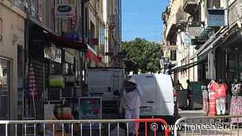 Valence : une apicultrice neutralise un essaim d'abeilles dans le centre-ville - France Bleu