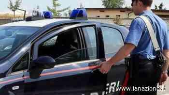 Evade dalla Comunità: furto, rapina e spaccio sull'asse Amelia-Roma - La Nazione
