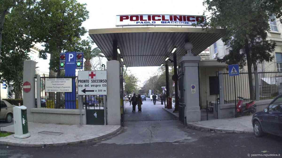 Palermo, resprò azoto: il policlinico paga 650 mila euro alla famiglia di un neonato - La Repubblica