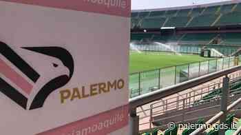 Stadio Barbera, resa dei conti tra il Palermo e il Comune - Giornale di Sicilia