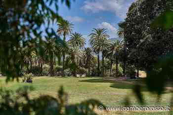 Parco di Villa Tasca a Palermo: progetto agri-culturale - Gambero Rosso