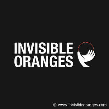 """Ayr Shows Us """"Where All Light Dies"""" - Invisible Oranges"""