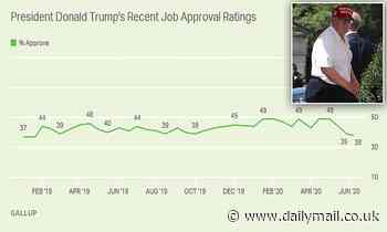 Donald Trump's approval rating at 38% with 2% Democrat support