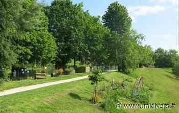 Visite du « Jardin de la Rue » à Villebon sur Yvette Jardin de la Rue samedi 4 juillet 2020 - Unidivers
