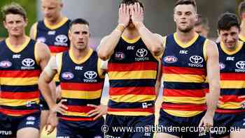 Hubs, camp not behind Crows' woes: O'Brien - The Maitland Mercury