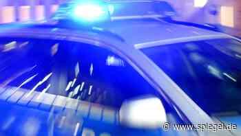 Brandenburg: Neonazi-Gruppe soll Anschlag auf Moschee geplant haben - DER SPIEGEL