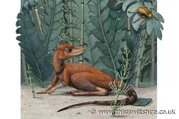 'Tiny bug slayer' may be related to dinosaurs - This Is Wiltshire