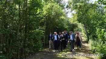 Le Bois de la Tassonnière, à Cysoing, au cœur du projet de maillage vert du Département - La Voix du Nord