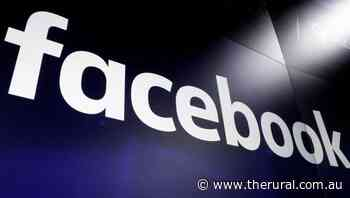 Facebook pauses govt access to H.Kong data - The Rural