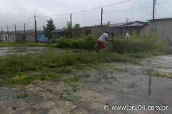 Moradores se unem e limpam mato em bairro de União dos Palmares - BR 104
