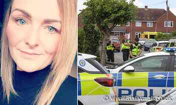 Father of paramedic stabbed in the chest says attack was 'completely random'