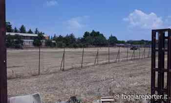 Foggia, degrado campo San Paolo al Cep. Dopo l'intervento del M5S arriva il taglio dell'erba - Foggia Reporter