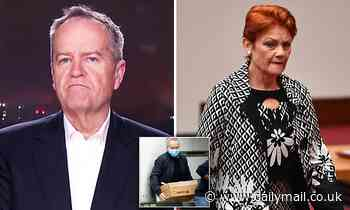 Bill Shorten takes aim at Pauline Hanson for racist slurs against social housing residents