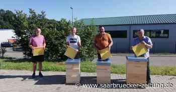 Imker aus Saarwellingen bekommen Spende nach Giftattacke auf Bienen - Saarbrücker Zeitung