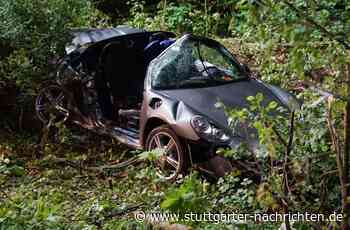 Unfall in Mosbach - Porsche prallt gegen mehrere Bäume – zwei junge Menschen tot - Stuttgarter Nachrichten