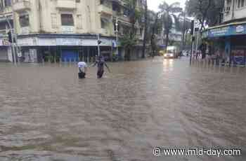 Mumbai Rains: Hindmata, King's Circle and other low-lying areas in city get waterlogged - Mid-day