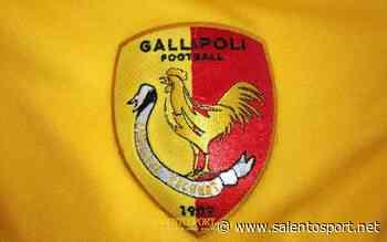 GALLIPOLI - Clamorosa suggestione per il dopo Salvadore - SalentoSport