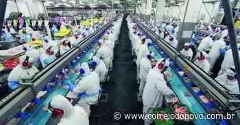 China suspende importações de frigoríficos de Três Passos e Lajeado - Jornal Correio do Povo