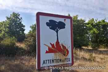 Incendie à Beaucaire : 10 hectares parcourus par un feu de broussailles - France 3 Régions