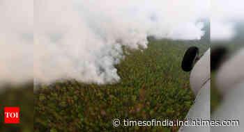 Siberian temperatures hit June record, fires spread: EU data