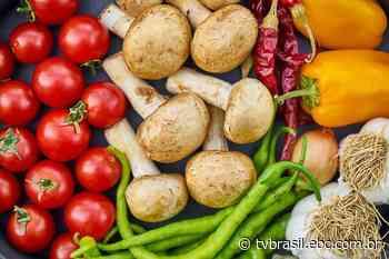Marcos Palmeira destaca importância da alimentação saudável | Sem Censura | TV Brasil | Cidadania - EBC