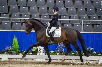 Escamillo weer helemaal terug met drie tienen - Horses.nl