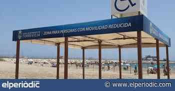 El Ayuntamiento de Torrevieja planta yucas, palmitos, taráis y palmeras en los maceteros de los paseos de la playa de La Mata - elperiodic.com