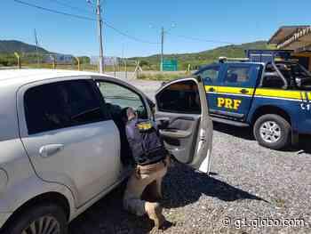 Carro roubado é recuperado pela PRF em Serra Talhada - G1