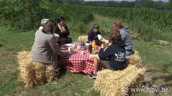 PicknickPoint lanceert online boekingsplatform voor picknick... (Hasselt) - Het Belang van Limburg