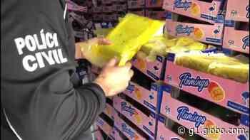 Polícia apreende em Fortaleza 60 kg de cocaína em carga de manga com destino à Europa - G1