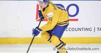 Buffalo Sabres Top 25 Under 25, #19: Marcus Davidsson