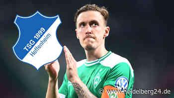 Max Kruse will zurück in die Bundesliga - wäre er einer für die TSG Hoffenheim? - heidelberg24.de