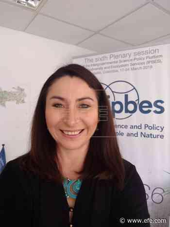Hernández Salgar (IPBES): Hemos acelerado la extinción de especies - EFE - Noticias