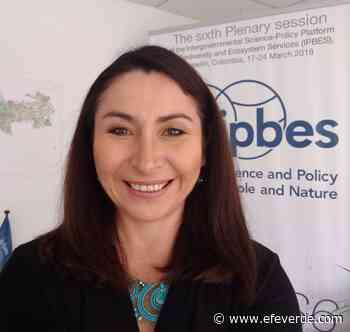 """Hernández Salgar (IPBES): """"Hemos acelerado la extinción de especies"""" - EFEverde, el periodismo del medio ambiente"""