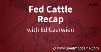Fed Cattle Recap | Price slide moderates