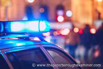 Yukon man, Manitoba woman, killed in three-vehicle crash near Whitehorse - ThePeterboroughExaminer.com