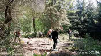 Minigolfanlage im Königseer Waldbad wird wieder freigelegt - Ostthüringer Zeitung