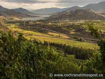 Trio of Okanagan wineries to offer $1,999 wedding package - Cochrane Times Post