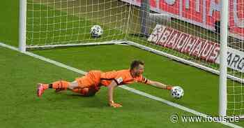 Bayer Leverkusen in der Einzelkritik: Hradecky patzt fatal, Havertz wirkungslos - FOCUS Online