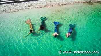 Miribel Jonage : et si vous appreniez à nager comme une sirène ? - Radio Scoop
