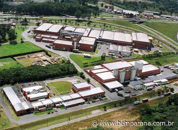 Dia Mundial do Chocolate: Curitiba abriga a maior fábrica de chocolates do mundo da Mondelez - Bem Paraná