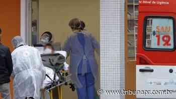 Covid-19 contamina mais de 7,5 mil pessoas em Curitiba; 195 morreram - Tribuna do Paraná