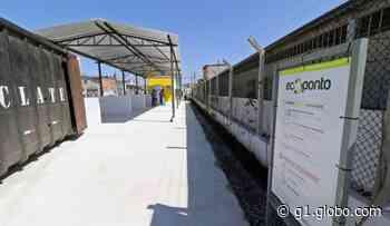 Ecopontos de Jundiapeba e Parque Olímpico, em Mogi das Cruzes, voltam a receber resíduos de madeira - G1
