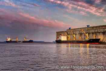 COVID-19 boosts grain shipments through Thunder Bay - Tbnewswatch.com