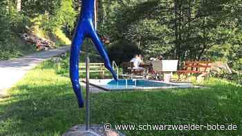 Schiltach: Neuer Bewacher eines Idylls - Schiltach - Schwarzwälder Bote