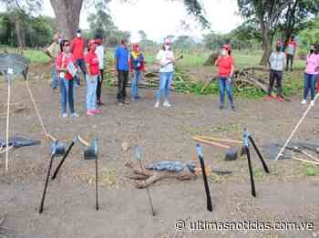 Mujeres de Ribas echan manos a la siembra en Zuata - Últimas Noticias