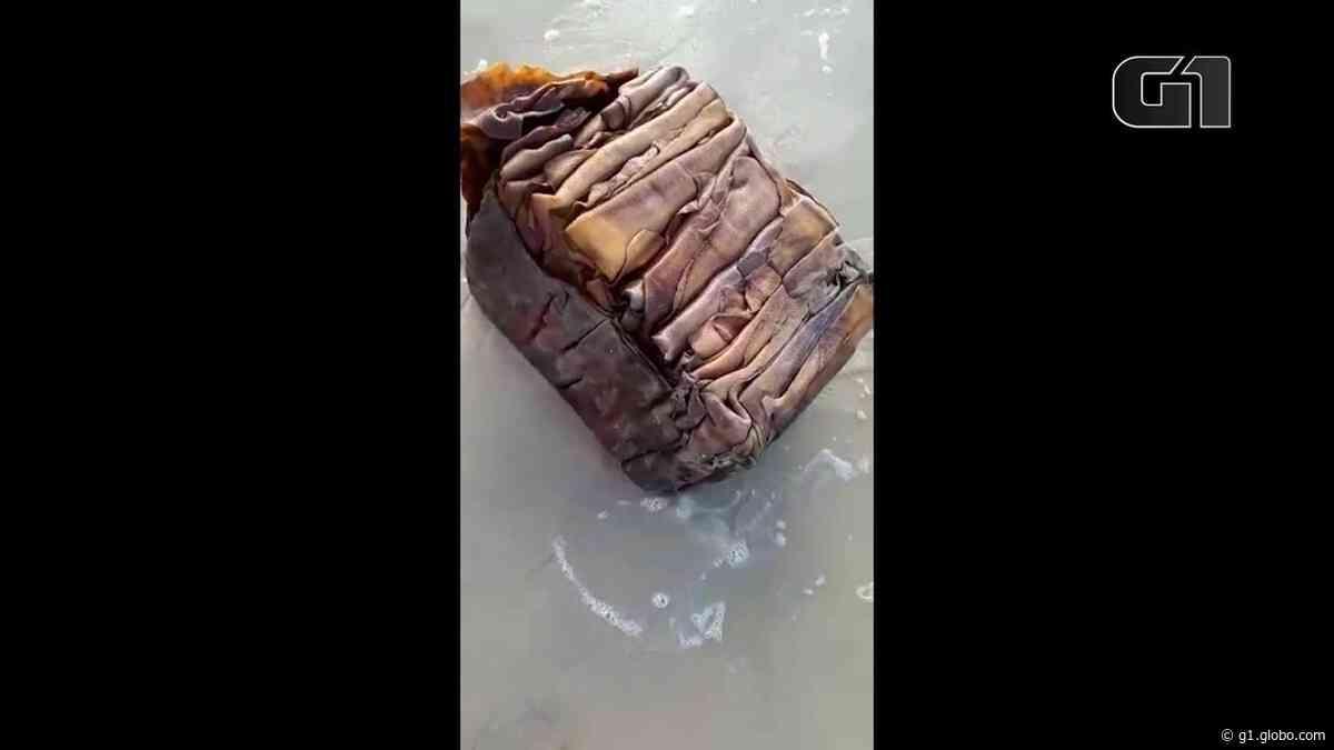 Outra caixa misteriosa surge em praia de Ipojuca; 'parece pele de algum tipo de animal', diz estudante que a encontrou - G1