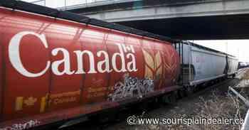 Canada's two largest railways move record grain in June, second quarter - Souris Plain Dealer
