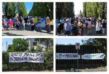 «Fermati Caterina», in 150 in piazza a Peschiera Borromeo, contro il taglio dei 240 alberi; Righini incontrerà gli organizzatori  Video  - 7giorni